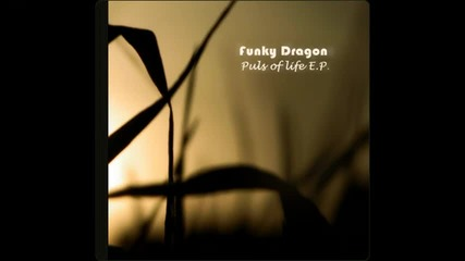 Funky Dragon - Puls Of Life [hq]