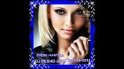 Zvezdi I Kartala-kuchek -dj Pesho-2011
