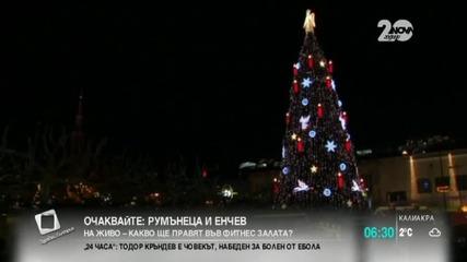 Дортмунд се радва на най-голямата коледна елха в света