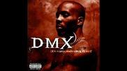 Dmx - I Can Feel It