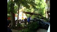 Автокомплекс Димитров- отстраняване щетите от бурята на 25.06.2014 гр. Димитровград