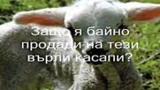 Заблеяло ми агънце - Борис Машалов