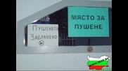 Balgarska rabota 8