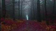 Svarti Loghin - The Silence Always Returns