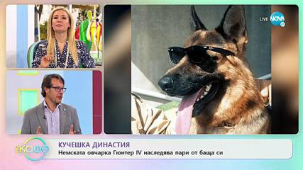 """Владо Николов: Най-богатите животни на планетата - """"На кафе"""" (27.05.2020)"""