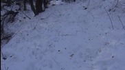 """29.1.2016г. - От Града в гората - Изкачване по веломаршрут """"мечката"""""""