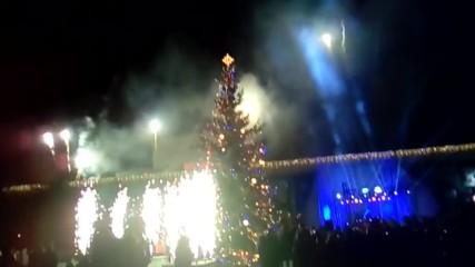 Запалването на Коледната Елха