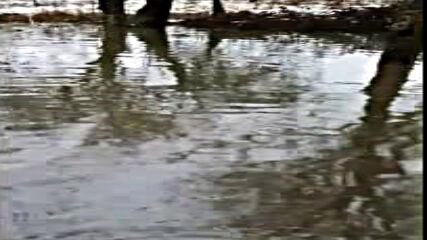 """""""Моята новина"""": Наводнение в Перник"""