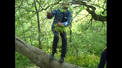 Андропов - кацнал на едно дърво