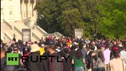 USA: 'March 2 Justice' protesters make it to Washington on foot from NY