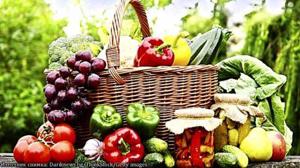 Най-големите лъжи и митове за диетите