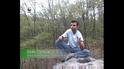 Wwf Свидетели на промените в климата - Боян Петров