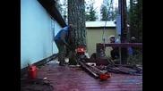 Професионално поваляне на дърво...