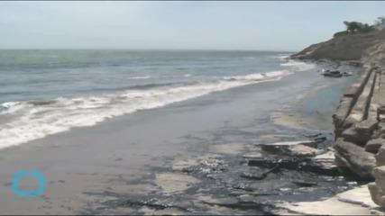 California Oil Spill Damages Rare Coastal Ecosystem
