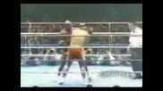 Бокс ErnestoHoodst K1