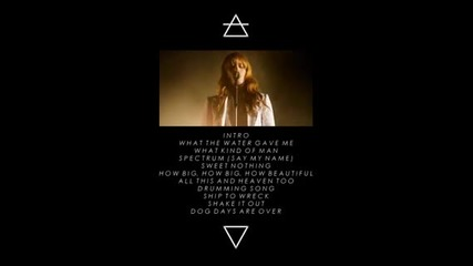 Florence&the Machine Spectrum (say My Name)