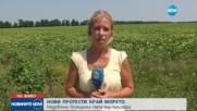 Борисов спря заповедта, която изкара на протест жители на 3 общини