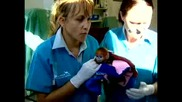 Бебе маймуна