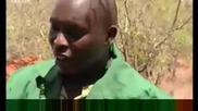 Lualani the elephant - the new mini matriach - Bbc wildlife