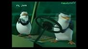 Пингвините от Мадагаскар Сезон 1 Епизод 9 Бг Аудио hq