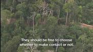 Отделено от цивилизацията Амазонско племе: Първия кадри от въздуха - Bbc