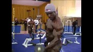 Фитнес Мания 1