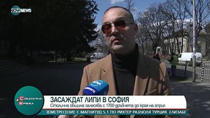 """""""Социална мрежа"""": В София засаждат над 1700 дървета"""