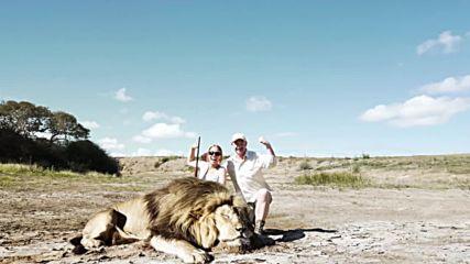 Лъв отмъщава за убития си другар!