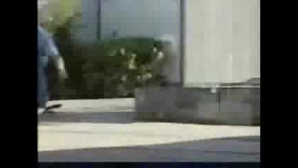 Rodney Mullen Skate !!