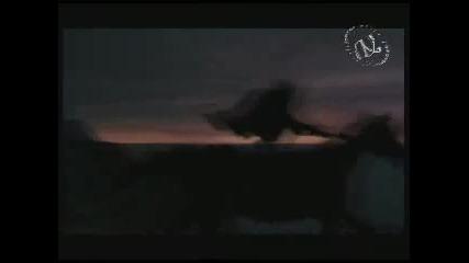 Алена Винницкая - Рассвет