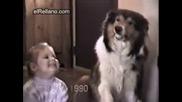 Смешна кучешка усмивка