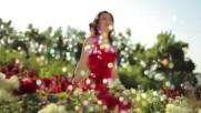 Фарангис - Mилион червени рози