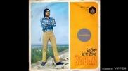 Saban Saulic - Ljubav nasa proslosti pripada - (Audio 1971)