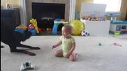 Доберман играе с бебе .