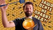 ЗАЩО осите не правят мед?