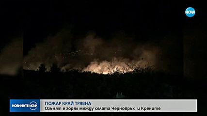 Новините на NOVA (14.11.2019 - 6.30 ч.)