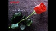 Албанска балада с превод ! Aida Cara - E imja dashuri