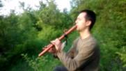 Песента на индианската флейта и птичките