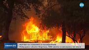ПОЖАРИ В КАЛИФОРНИЯ: Евакуираха няколко квартала