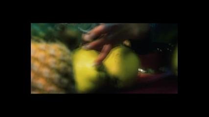 Видеоклип: Преслава - Феномен