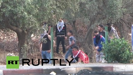 State of Palestine: One dead, scores injured in Ramallah clashes with IDF