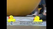 Гигантска надуваема патица обикаля най-атрактивните градове по света