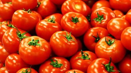 Как доматите загубиха вкуса си