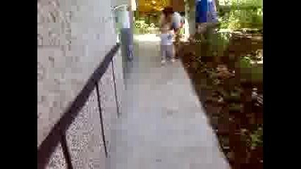 Видео - 0004