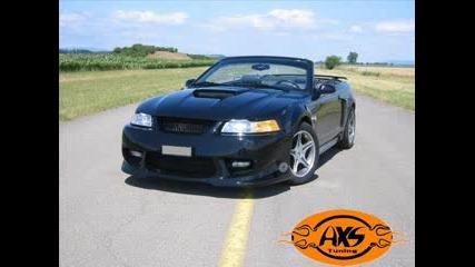 Mustang Зверове