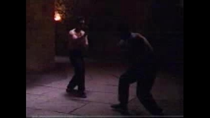 Classical Wing Chun Fighting