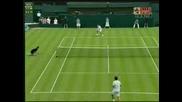 Wimbledon - Federer - Hrbaty - 6:2 Втори Сет