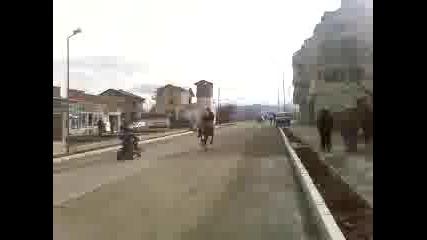 Гонка С Атв И Кон На Тодоров Ден Лозенец
