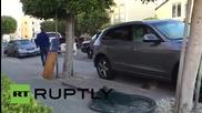 Полицията преследва избягал морски лъв по улиците на Сан Франциско