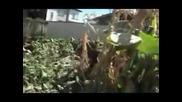 Цигани грабят посред бял ден в Кочериново 1